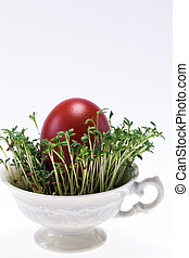 isolated cress in small cup with easter egg on white background - closeup