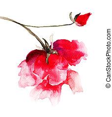 rosas, vermelho
