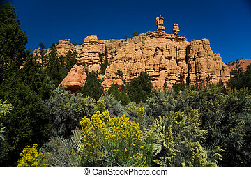 Rock formations - Beautiful rock formations in Zion National...