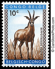 Roan antelope - A stamp printed in Congo shows the roan...