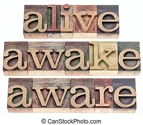 alive, awake, aware words - isolated text in vintage...
