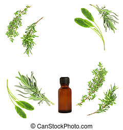 Medicinal and Culinary Herbs