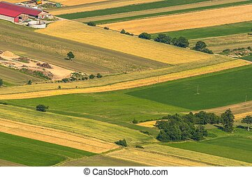 Green fields aerial view before harvest