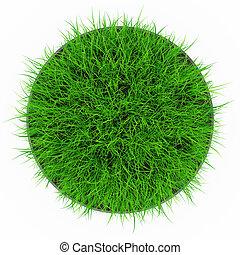 grass pot top view