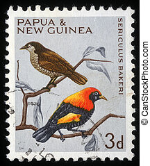 Sericulus bakeri - A stamp printed in Papua New Guinea shows...