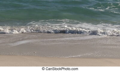 Beach Surf Waves