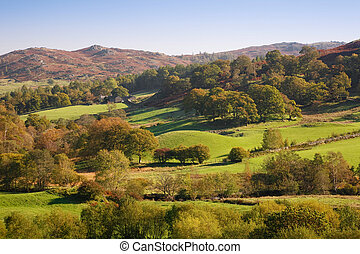 Rolling English countryside - Rolling countryside with green...