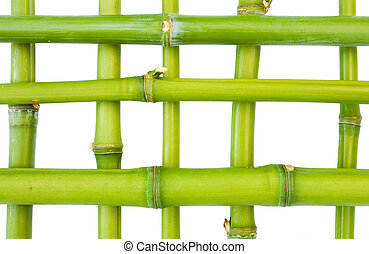 Bamboo pattern isolated against a white background