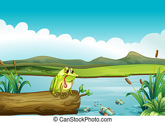 The lonely frog - Illustration of the lonely frog
