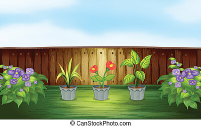 Different types of plant inside the wooden fence -...