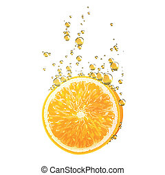 Vector Orange Fruit - Vector Illustration of Orange Fruits...