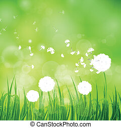 Vector Background with Dandelion