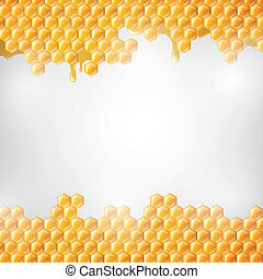 Vector Honeycombs - Vector Illustration of a Natural...