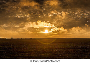 Lincolnshire wolds sunflare - Picture of Lincolnshire wolds...