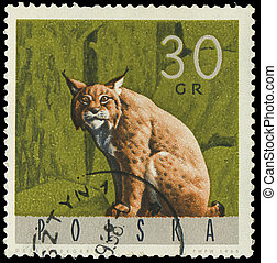 POLAND - CIRCA 1965: A stamp printed in Poland from the...