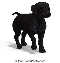 schattig, Puppy, labrador