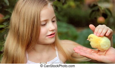 Child with chicken - A little girl with chicken in his hands...