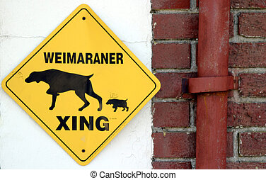 Weimaraner Xing (6647) - Yellow warning sign with weimaraner...