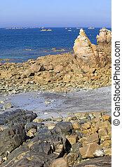 coast rose - Cote de granite Rose, Brittany Coast near...