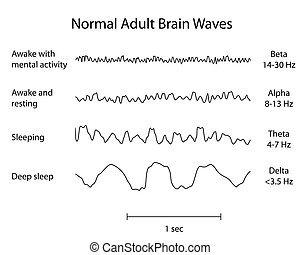 Normal brain waves eeg, eps8 - Types of human adult normal...