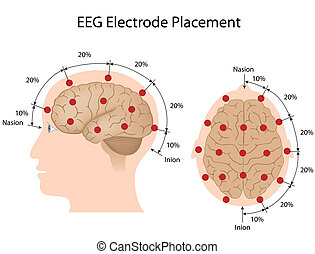 EEG electrode placement, eps10 - 10-20 system electrodes...