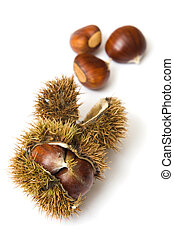 Chestnuts - Sweet chestnuts isolated on a white background