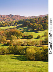 Countryside in Lake District, England - Countryside bathed...