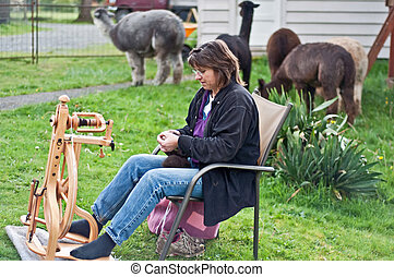 Woman Spinning Alpaca Wool Outdoors - This middle aged...