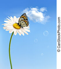Nature spring daisy flower with butterfly. Vector...
