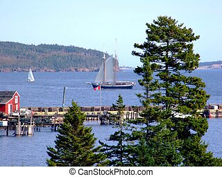 Schooner and sail boats - Schooner and sail boat at the...