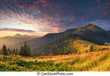 Colorful autumn landscape in the mountains Sunrise