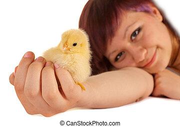 小雞, 復活節, 藏品