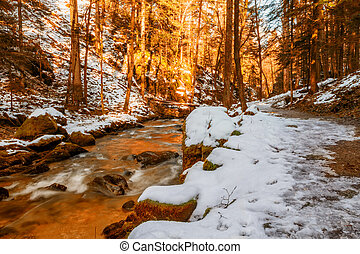 The mountain river at sunset in canyon in Baden-Baden...