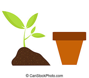 Plant and pot - Planting flower in pot. Gardening vector...