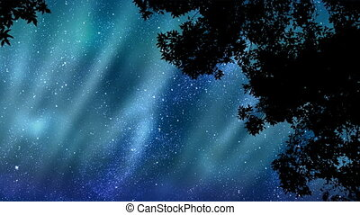 Aurora Borealis - Polar lights animation in a star-filled...