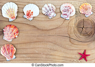 Seashells frame on old wooden surface