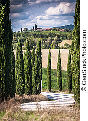 Tuscany - View of scenic Tuscany landscape with road and...