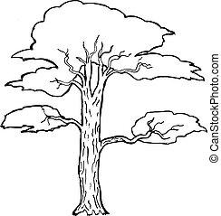 acacia - Hand drawn, vector, cartoon illustration of acacia