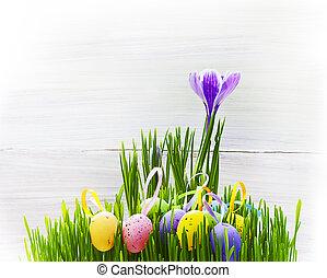 Easter Egg background wooden card spring flower grass