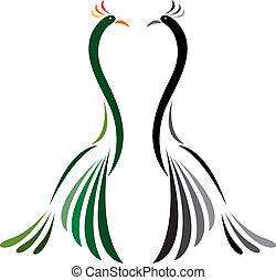 Vector image of peacock on a white background