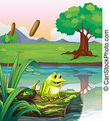 A frog above a trunk with algae - Illustration of a frog...