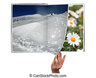 Book of seasons - Hand through the book of seasons on white...