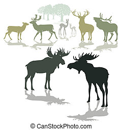 Elk, deer and fawn