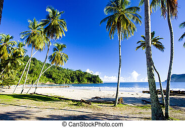 maracas, bahía, Trinidad