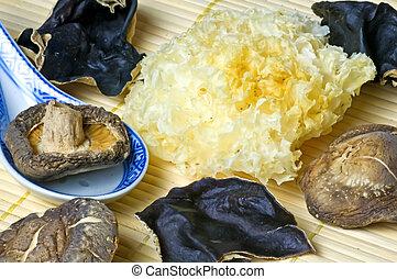 jew's,  Shiitake, oreja, Hongo