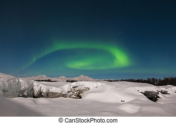 Northern Lights over Denali - Northern lights circle over...