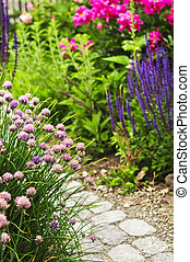 Path in blooming garden - Lush blooming summer garden with...