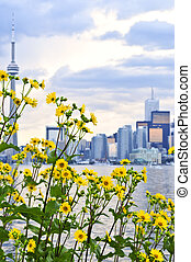 Toronto skyline - Toronto city waterfront skyline with...