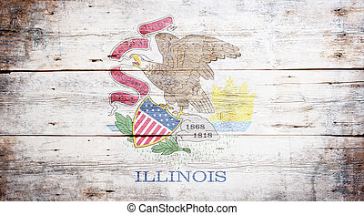 Flag of the state of Illinois