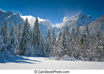 Fusine lakes basin - Fusine lakes' basin and Mangart...